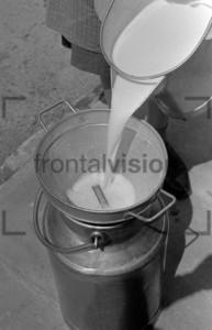 Milch wird in Milchkanne gegossen | Milk flows in milk chum