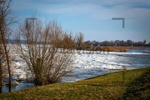 Oderbruch im Winter 2021 mit Eisschollen