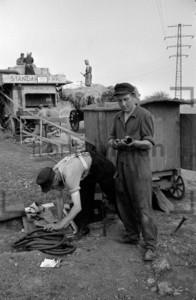 Erntehelfer 1961   Seasonal worker 1961