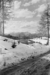 Seelfeld Winter 1956