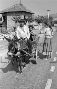 Landbevölkerung auf einem Eselskarren | Rural people on a donkey cart historical image 1965