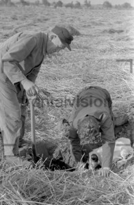 Bauer auf dem Feld mit Sack Loch