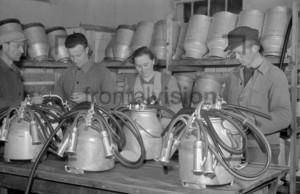 Molkerei Dairywork