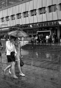 Frauen unter Regenschirm | Women under umbrella
