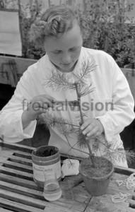 Maedchen pflanzt Baum   Woman planting tree