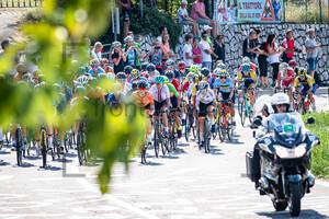MAGNALDI Erica: UEC Road Cycling European Championships - Trento 2021