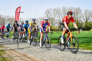 HALLER Marco: Dwars Door Vlaanderen 2021 - Men