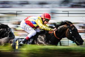 STARKE Andrasch: Horse Race Course Hoppegarten