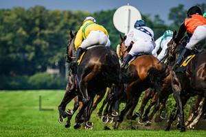 BEST Andre: Horse Race Course Hoppegarten