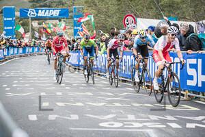 HIRSCHI Marc: UCI Road Cycling World Championships 2020