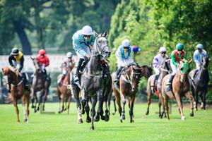 7. Race: Horse Race Course Hoppegarten