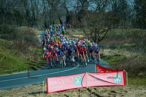 Peloton: Oxyclean Classic Brügge - De Panne 2021 - Men