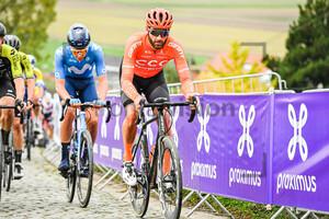 VAN KEIRSBULCK Guillaume: Ronde Van Vlaanderen 2020