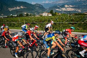 REY Tim: UEC Road Cycling European Championships - Trento 2021