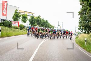 Peloton: National Championships-Road Cycling 2021 - RR Women