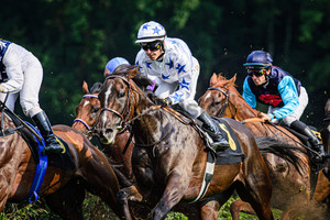 LAUBE Martin: Horse Race Course Hoppegarten