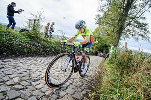 : Ronde Van Vlaanderen 2020
