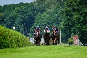 9. Race: Horse Race Course Hoppegarten